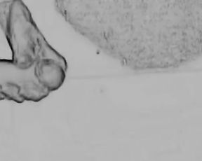 Art of Prostate Tugging